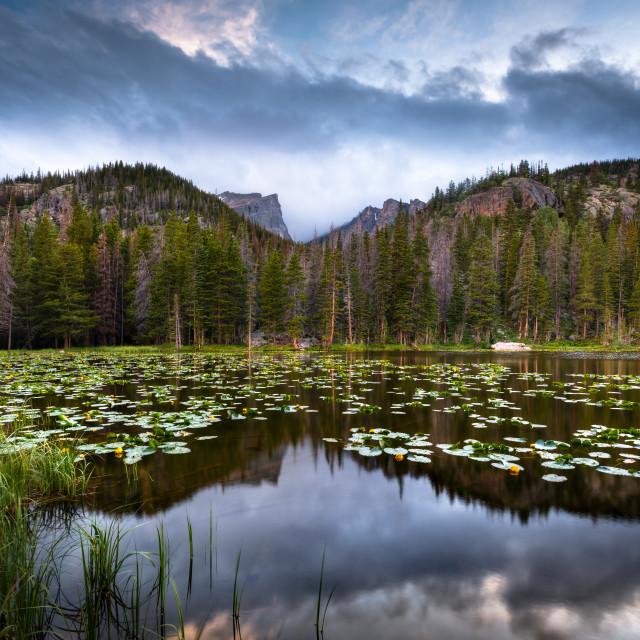 """""""Nymph Lake"""" stock image"""