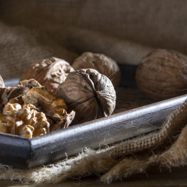 """walnuts moody and woody still lifes"" stock image"