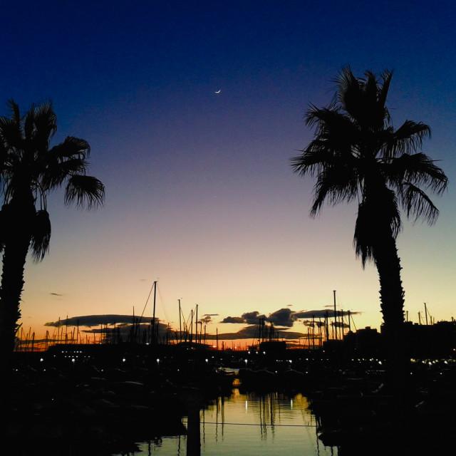 """Alicante Marina Dusk"" stock image"