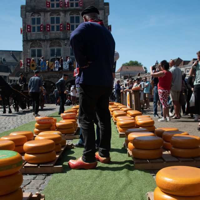 """""""Dutch Cheese market in of City Alkmaar"""" stock image"""