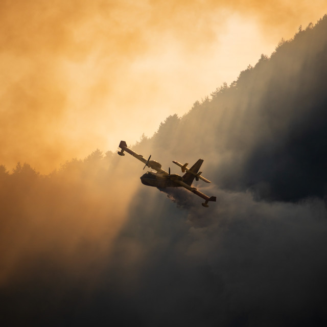 """""""Wildfire Italy - L"""" stock image"""