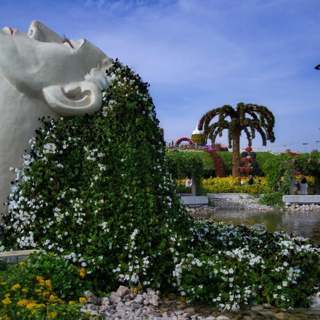 """""""Flower dream"""" stock image"""