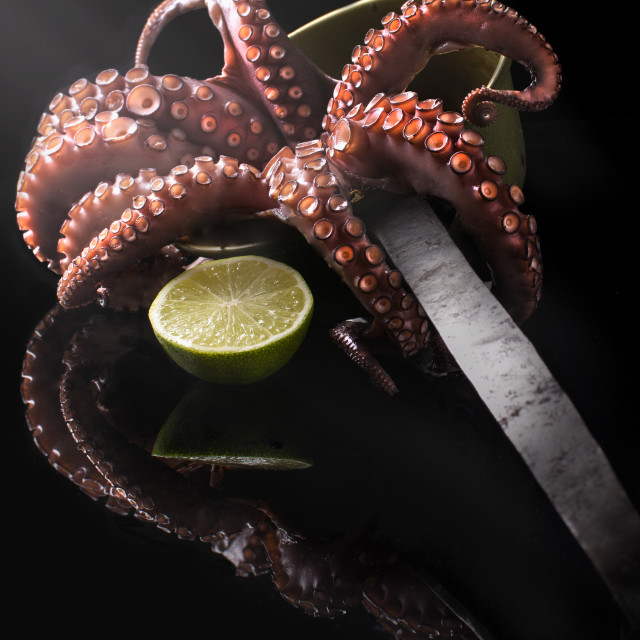 """""""cooking octopus"""" stock image"""