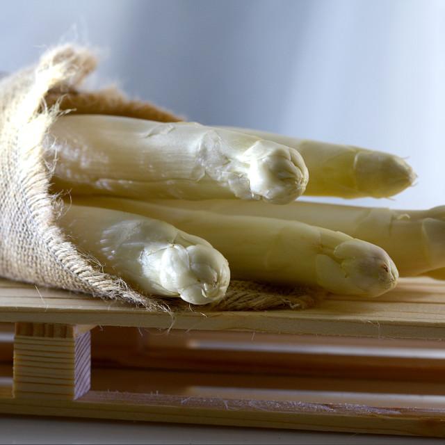 """white asparagus"" stock image"