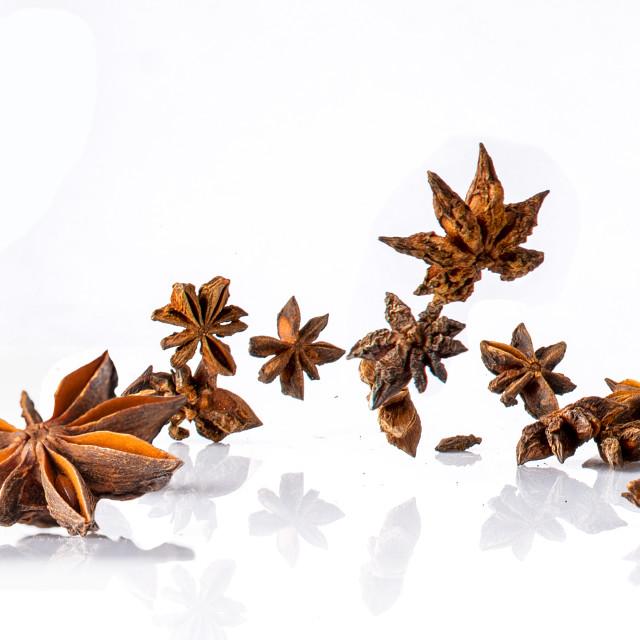 """""""star anise flying -left"""" stock image"""