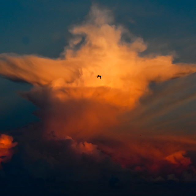 """Anvil Sunrise, Galapagos Islands"" stock image"