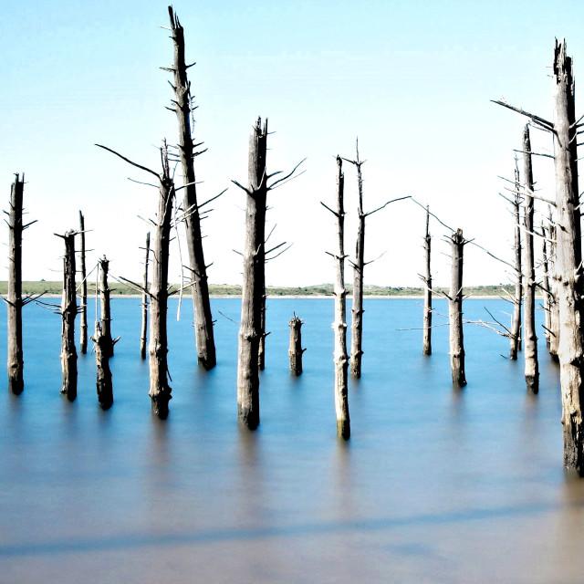 """Colliford Lake."" stock image"