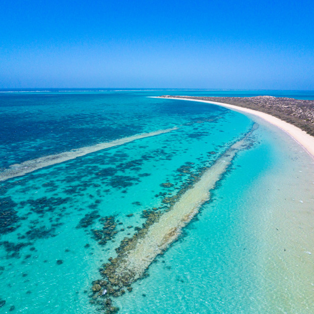 """""""Ningaloo reef close to Coral Bay aerial image of Reef Shark breeding ground"""" stock image"""