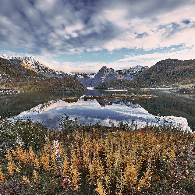 """""""Arnøy at Sløverfjorden"""" stock image"""