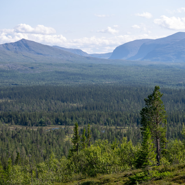 """""""View from Middagsvalen"""" stock image"""