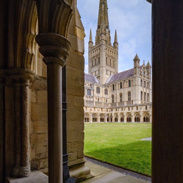 """""""Norwich Cathedral cloisters"""" stock image"""