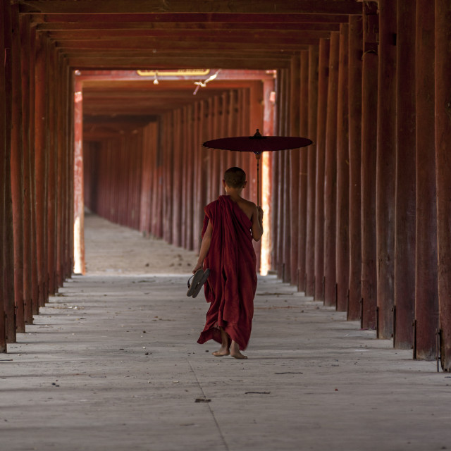 """3540 - Shin-pin-sar-gyo-paya monastery: a novice monk counting the pillars."" stock image"