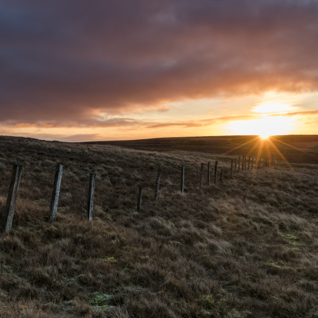 """""""A Treeless Moorland at Sunrise, North Pennines, Teesdale, County"""" stock image"""