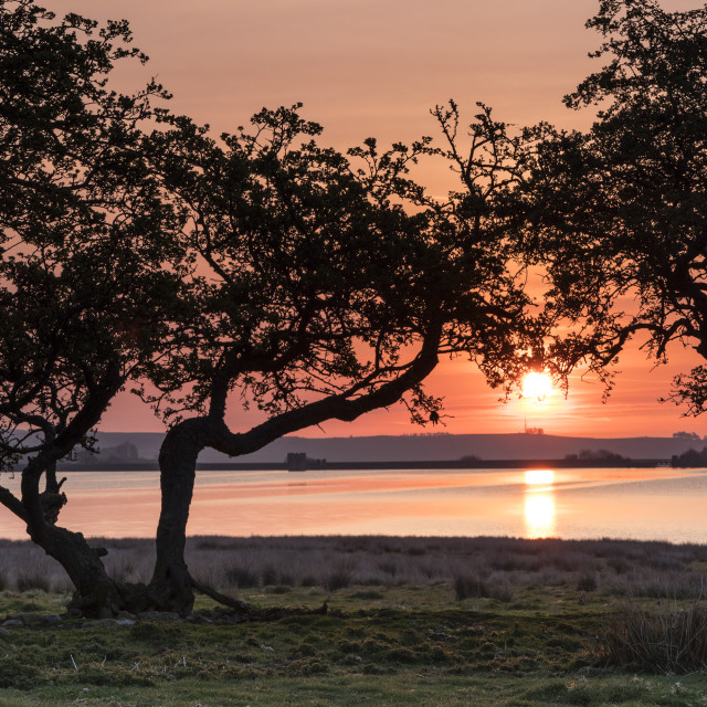 """""""Sunrise Over the Tranquil Waters of Hury Reservoir, Baldersdale,"""" stock image"""