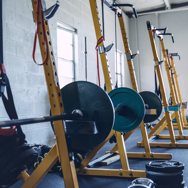 """Barbells on stands against wall in gym"" stock image"