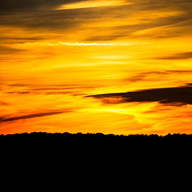 """""""Bright Orange Sunset"""" stock image"""