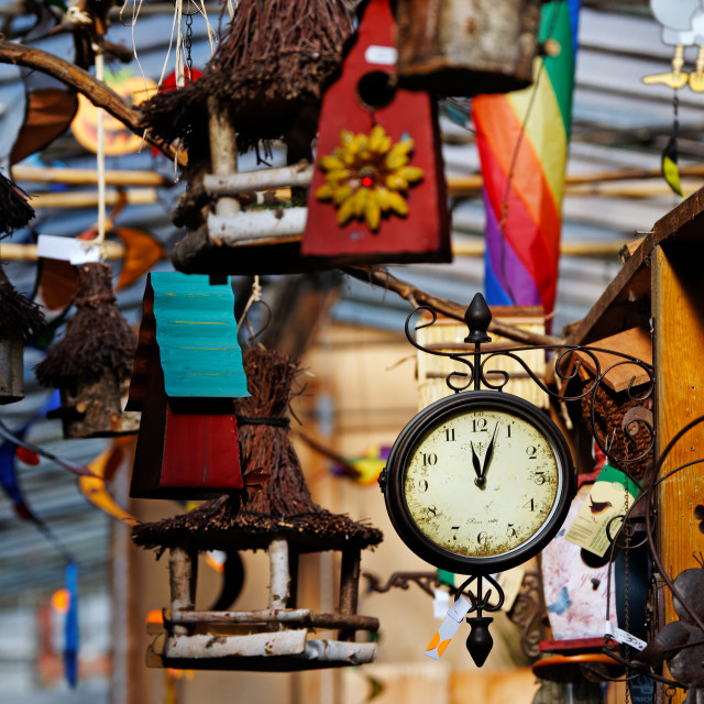 """""""Birds Market on Île de la Cité"""" stock image"""