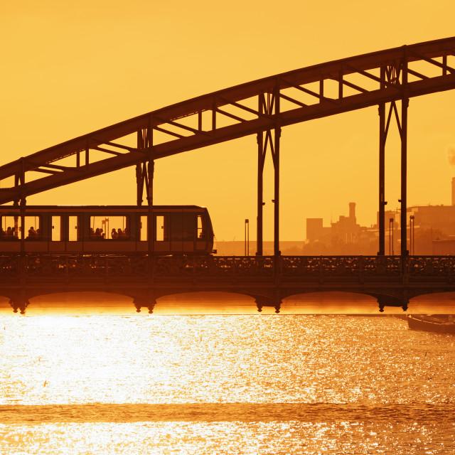"""Golden light on Austerlitz viaduct"" stock image"