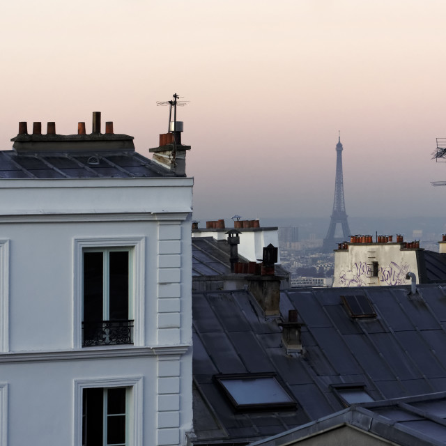 """""""Eiffel tower and roofs of Paris"""" stock image"""