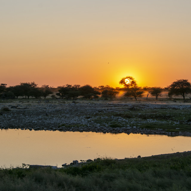 """savannah sunsets in namibia"" stock image"