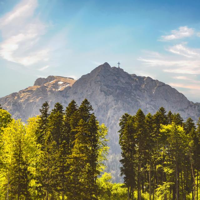 """""""Bran Mountain and Cross near Brasov, Romania"""" stock image"""