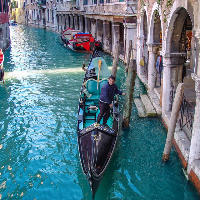 """""""Gondolier In Venice Grand Canal"""" stock image"""