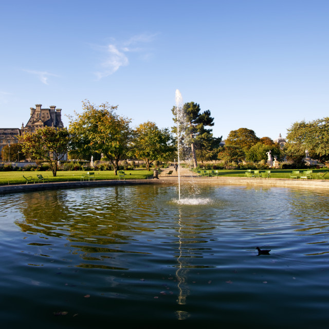 """Tuileries reflection"" stock image"