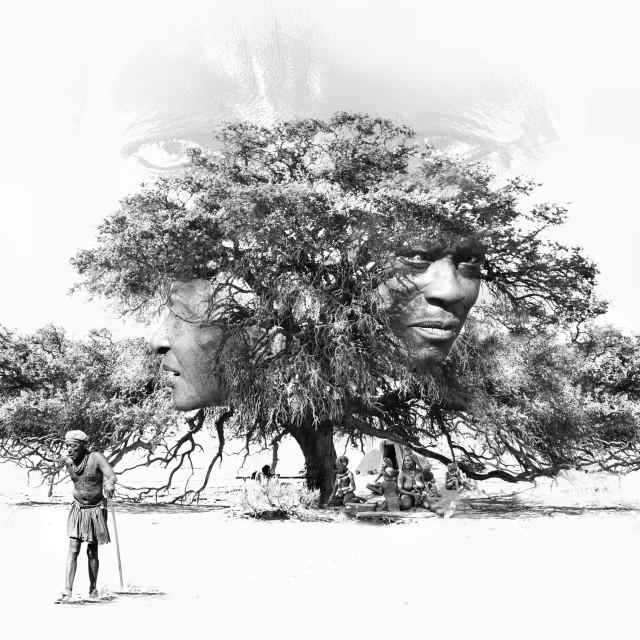 """Himba portrait painting style"" stock image"