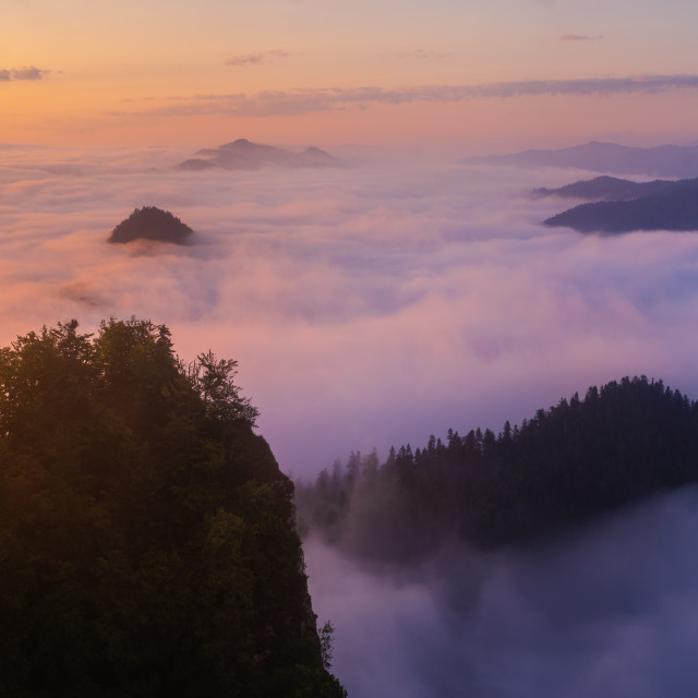 """beautiful, spectacular sunrise above the clouds at the top of Three..."" stock image"