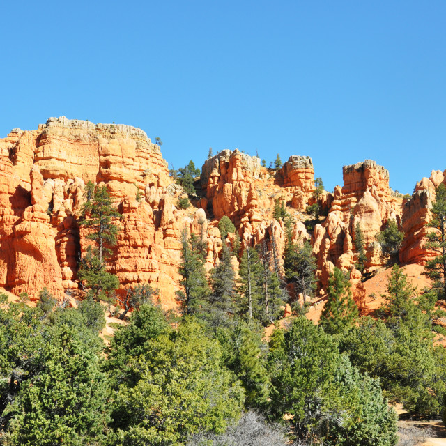"""""""drive by bryce canyon"""" stock image"""