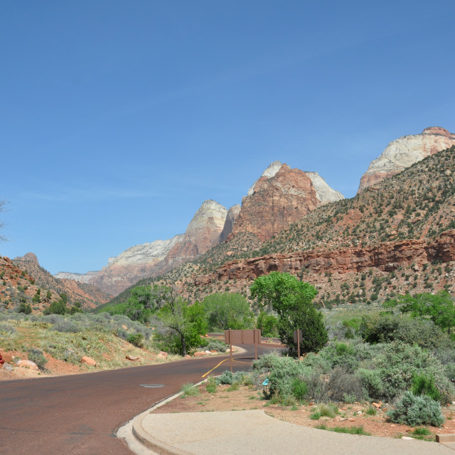 """""""zion canyon in utah"""" stock image"""
