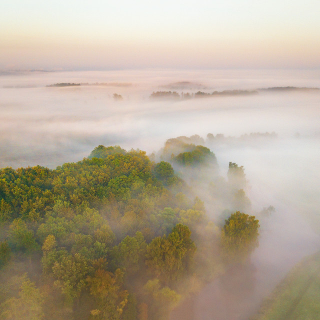 """""""Morning fog over river, meadow and forest. Amazing nature sunlig"""" stock image"""