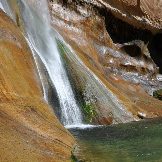"""""""calf creek waterfalls in utah"""" stock image"""