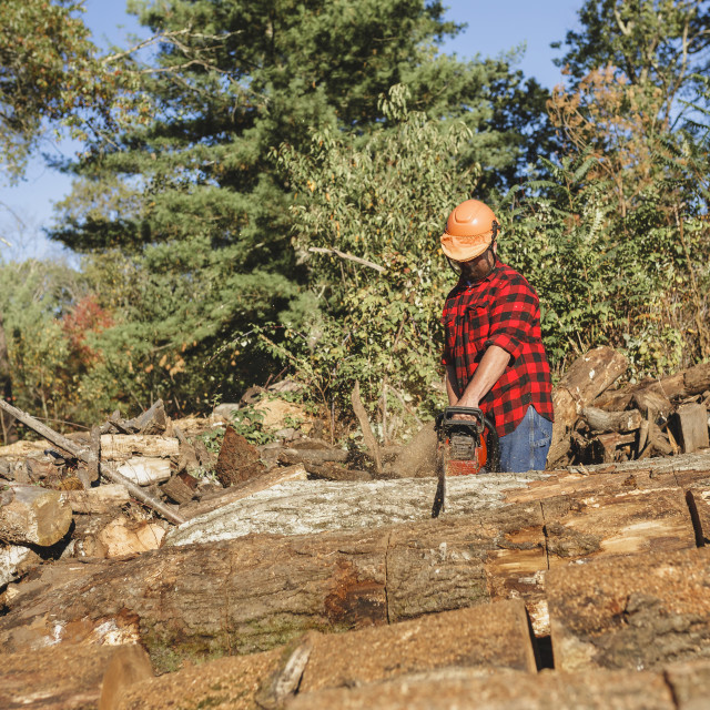 """""""Lumberjack cutting wood with chainsaw"""" stock image"""