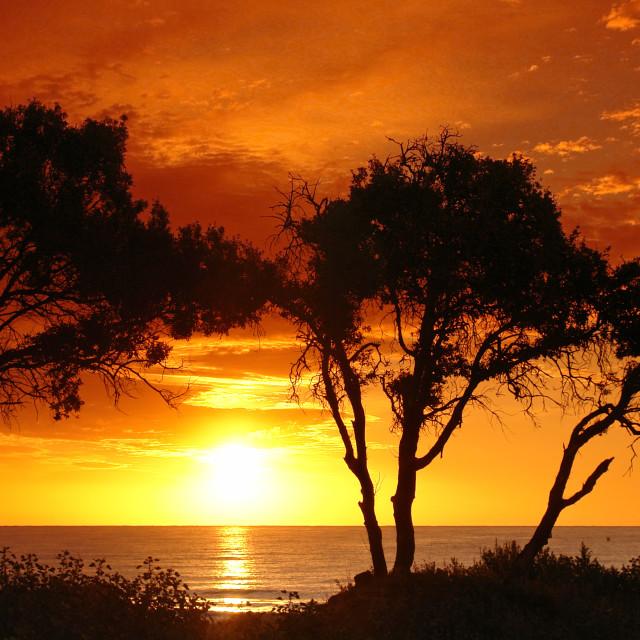 """Mediterranean dawn"" stock image"