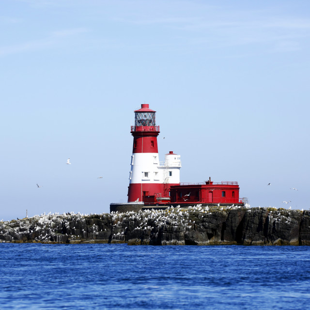 """Lighthouse on the Farne Islands"" stock image"