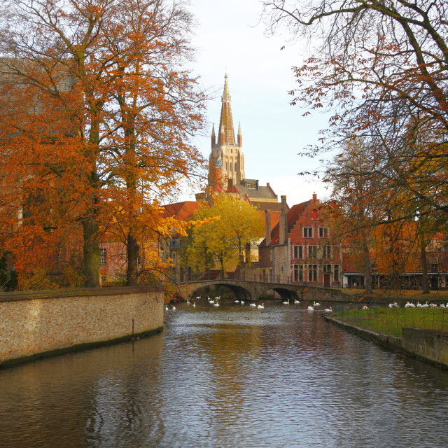 """Autumn in Bruges"" stock image"