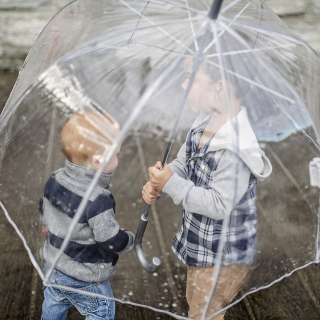 """Brothers below transparent umbrella standing on walkway during rainy season"" stock image"