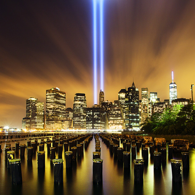 """""""Wooden posts in river and illuminated city with Tribute in Light at night"""" stock image"""
