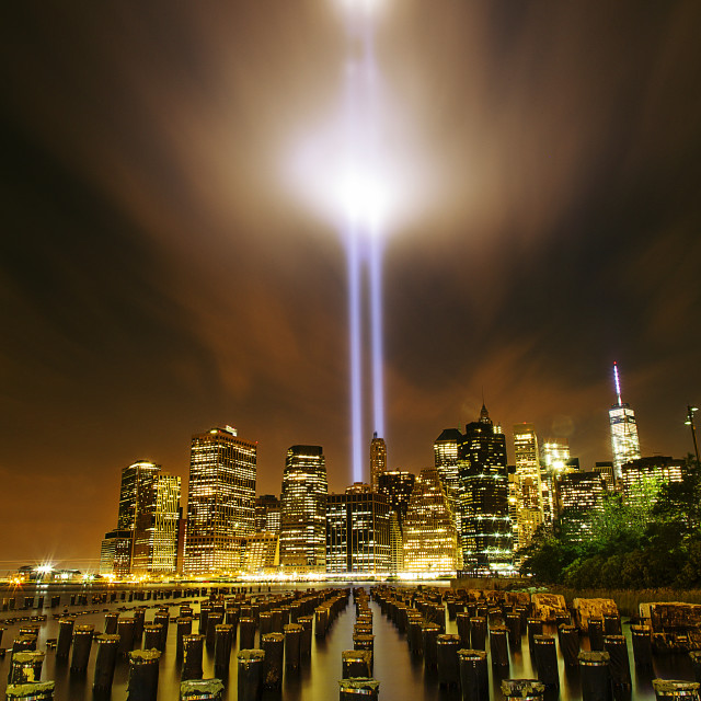 """""""Wooden posts in river against illuminated city with Tribute in Light at night"""" stock image"""
