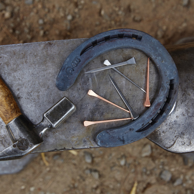 """""""Overhead view of horseshoe with hammer and nails on anvil"""" stock image"""