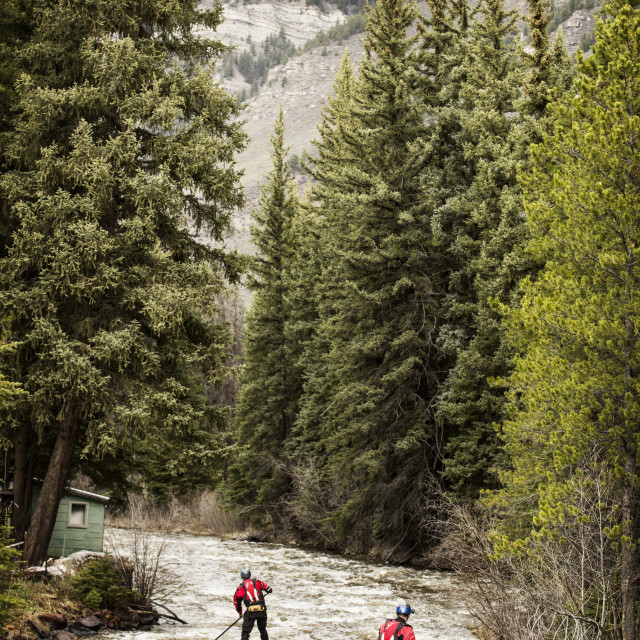 """""""Rear view of paddlers paddling in river amidst forest"""" stock image"""