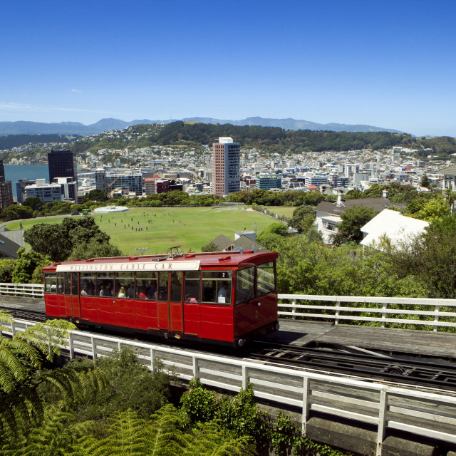 """""""High angle view of Wellington Cable Car by city against blue sky"""" stock image"""