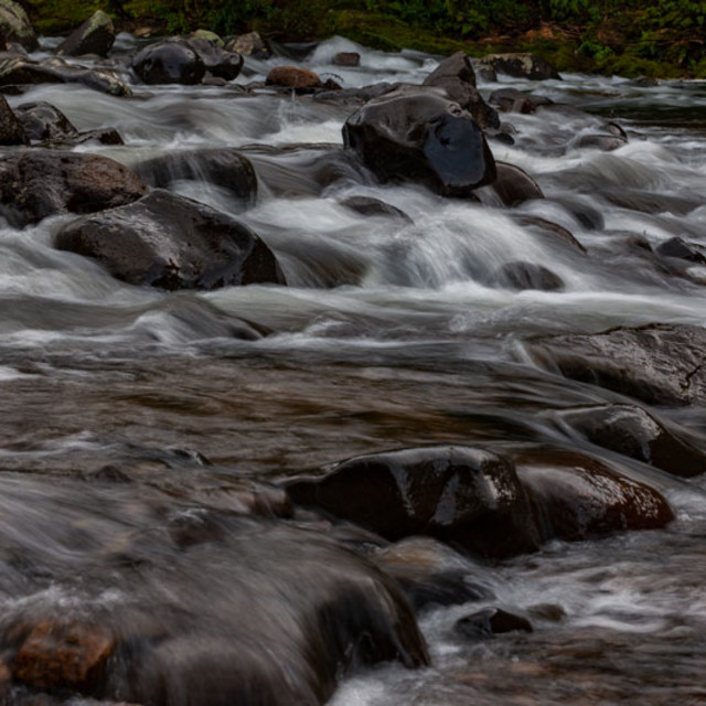"""Karangahake gorge river"" stock image"