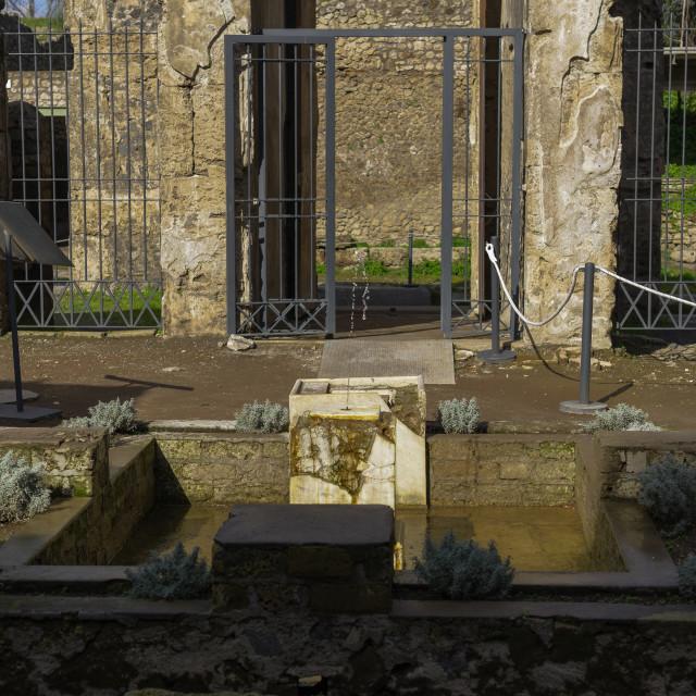 """""""Pompeii, Italy Casa di Octavius Quartio entrance with square basin."""" stock image"""