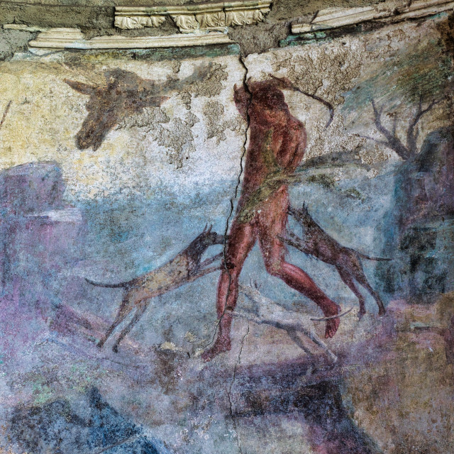 """""""Painting of a hunting scene in a house in Pompeii"""" stock image"""