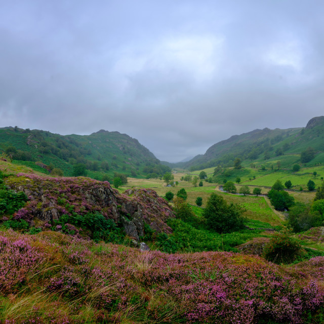 """Overcast views from Watendlath towards Derwent water in the Lake"" stock image"