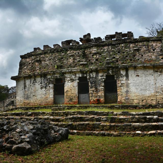 """mayan temples in yucatan mexico"" stock image"