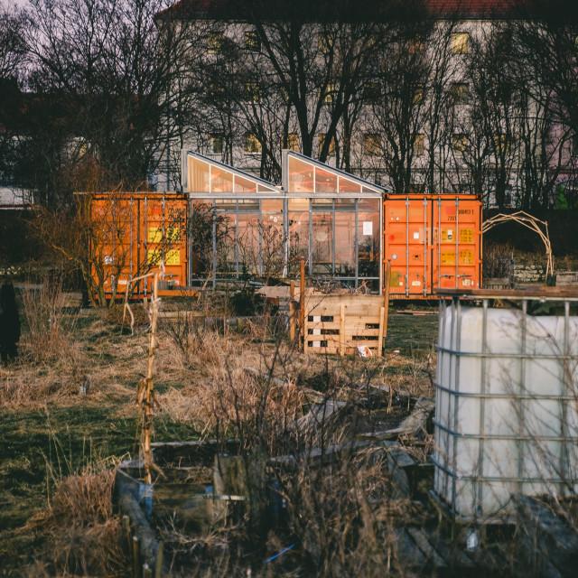 """""""Tempelhofer Feld"""" stock image"""