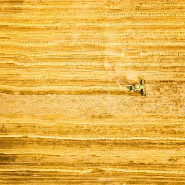 """""""Harvester machine working in field. Combine harvester agricultur"""" stock image"""